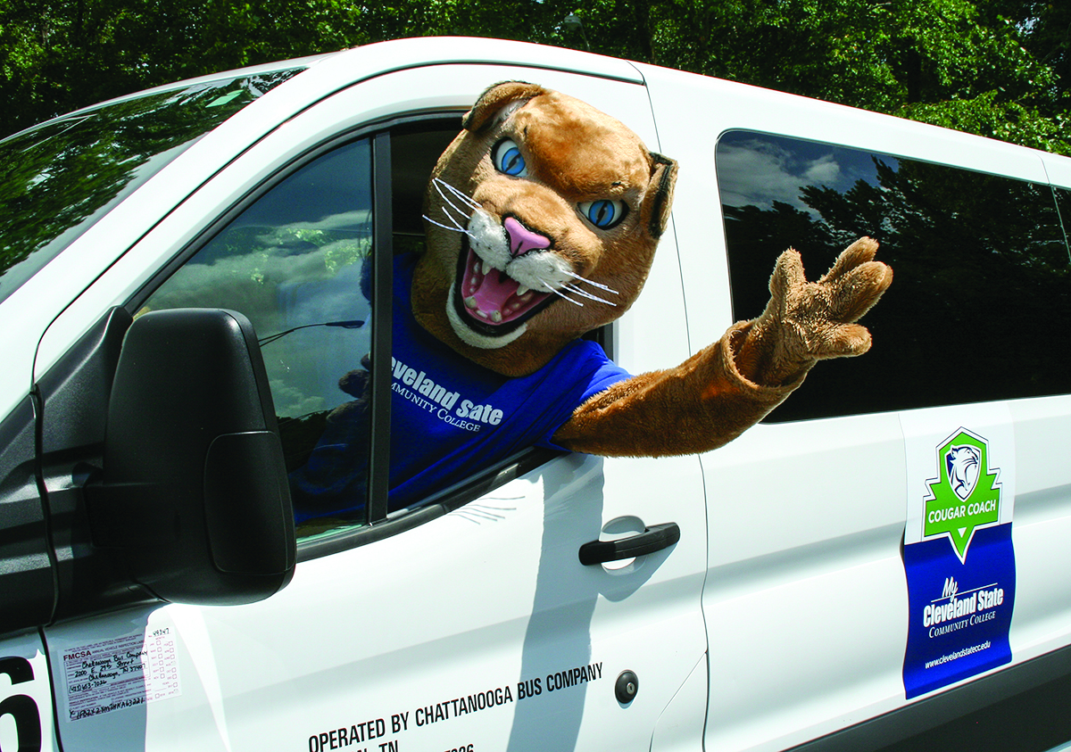 Cougar driving a van in the parking lot.